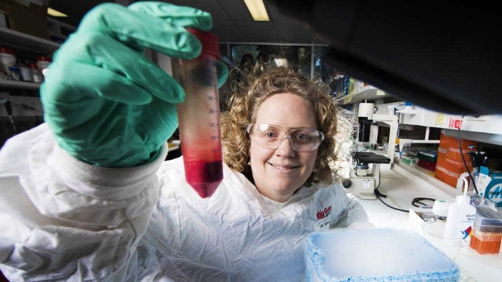 Dr Danielle Stanisic Working on a vaccine for Malaria